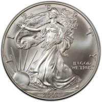 2003 1 oz American Silver Eagle Coin - Gem BU