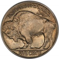 1913 Buffalo Nickel Coin - Type 2 - Choice BU