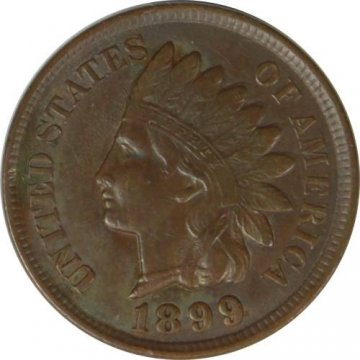 1899 Indian Head Cent Coin - Chipped 9 - Borderline Uncirculated