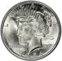 1924 Peace Silver Dollar Coin - Brilliant Uncirculated (BU)