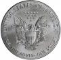 2019 1 oz American Silver Eagle Coin - Gem BU